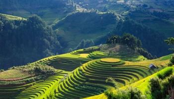 Vietnam Paid Internship Program